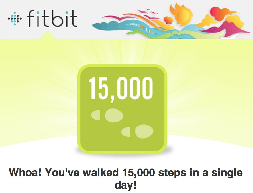My highest number of steps in one day since tracking them from November 9th, 2013.
