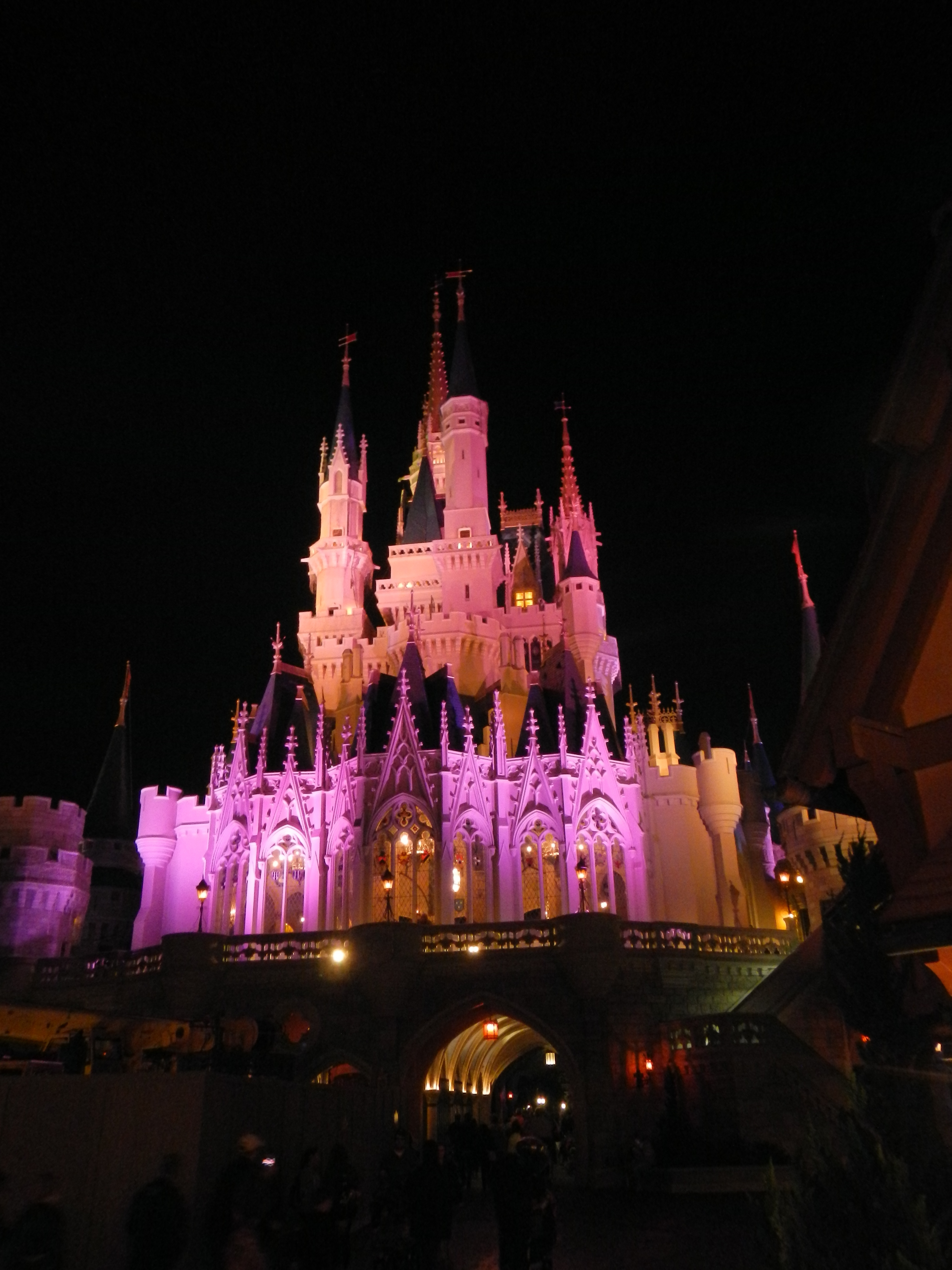 Another shot of Cinderella's Castle.
