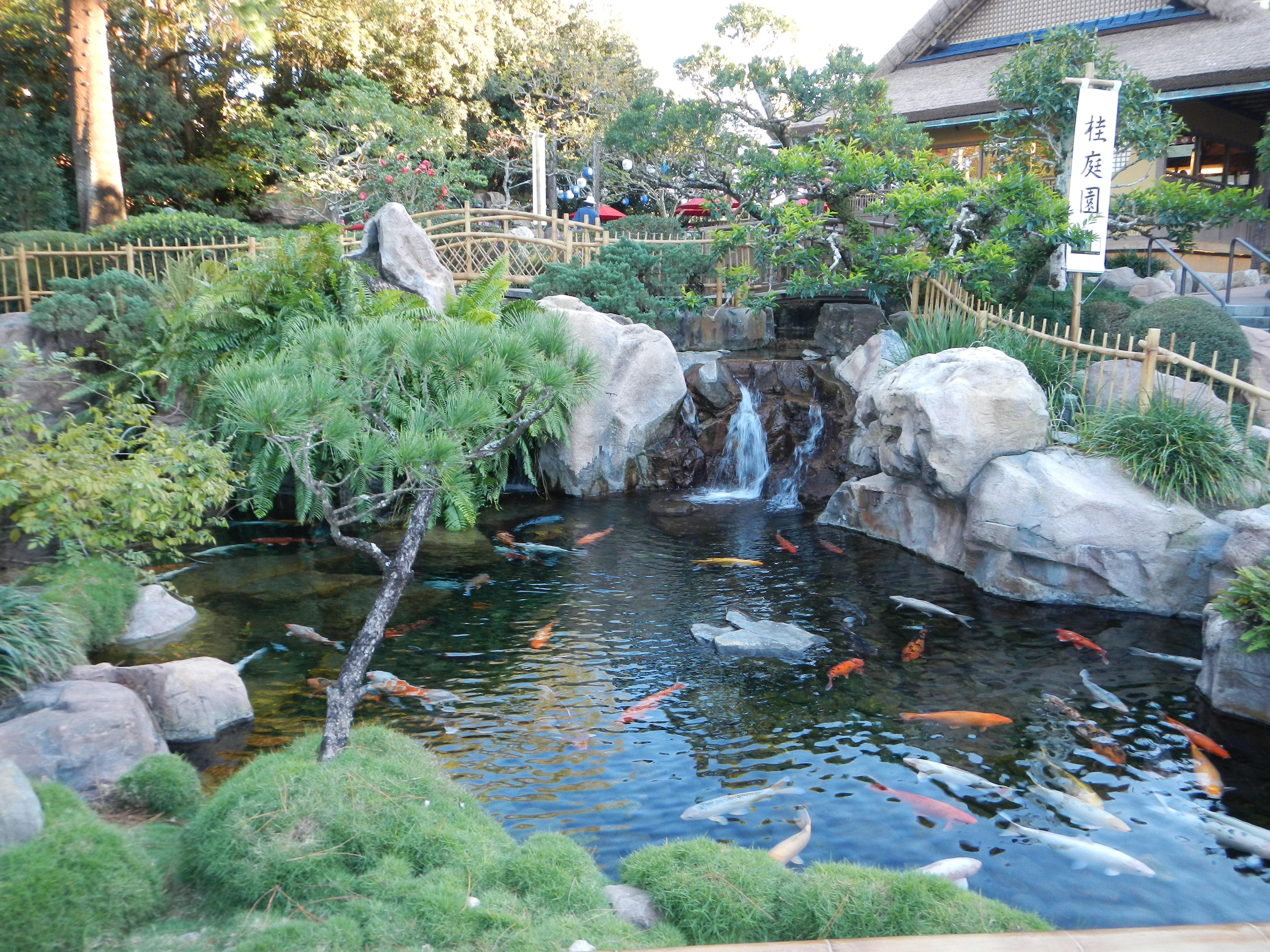 Epcot - Japan - Japanese Gardens