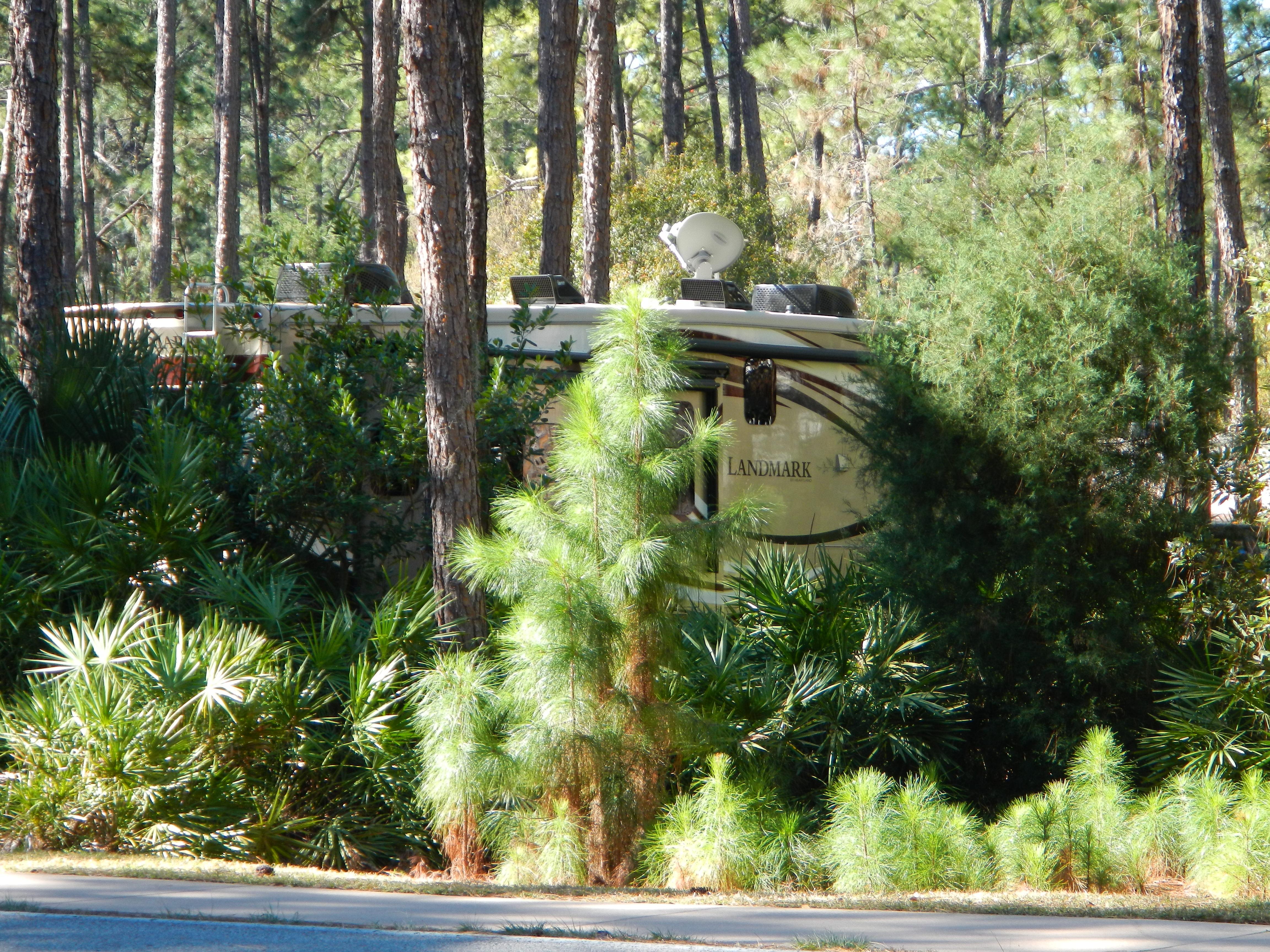 Misc - 2014 Heartland Landmark Savannah at Fort Wilderness Site 1217